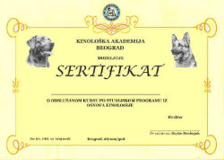 Verified Certificate